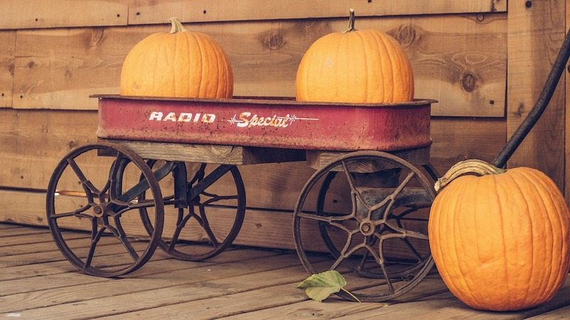 Pumpkins in a red wagon in Athens